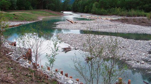 Landschaftsschutzgebiet Milser Au, östliche Umgestaltungsfläche